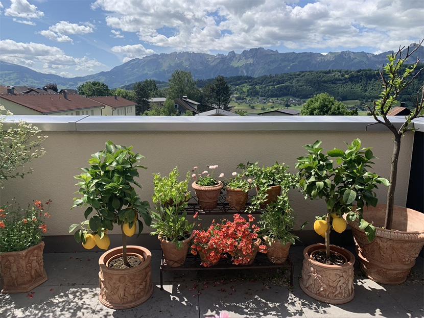 Impruneta Terracatta, Österreich